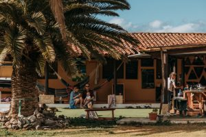 Twin Fin Tenerife – Where Dreams Become Reality - Main Photo